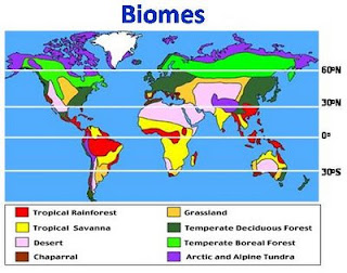 Apes Unit 4: Biomes - Lessons - Tes Teach